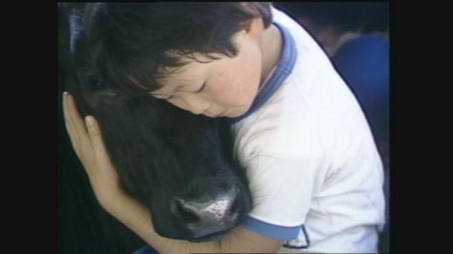 3月12日開催【開催終了】「夢は牛のお医者さん」上映記念。第10回シネマワークショップ