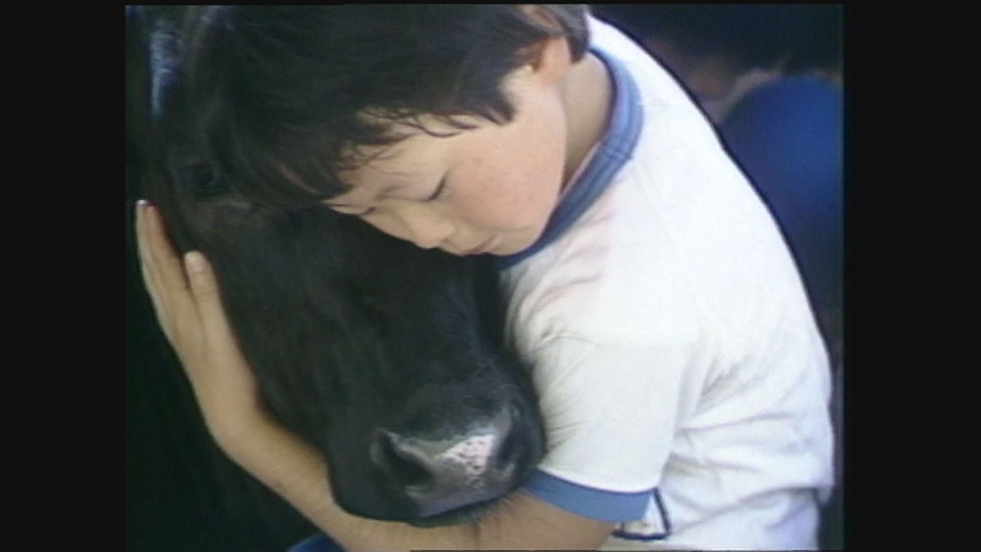 【開催終了】「夢は牛のお医者さん」上映記念。第10回シネマワークショップ