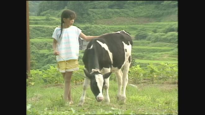 【開催終了】トランシネマ主催第3回上映会『夢は牛のお医者さん』